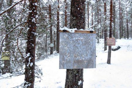 Å-samtale-med-trær-ondalen11.jpg