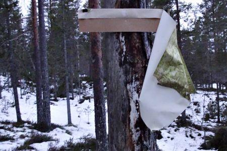 Å-samtale-med-trær-ondalen5.jpg