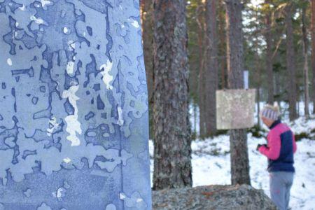 Å-samtale-med-trær-ondalen12.jpg