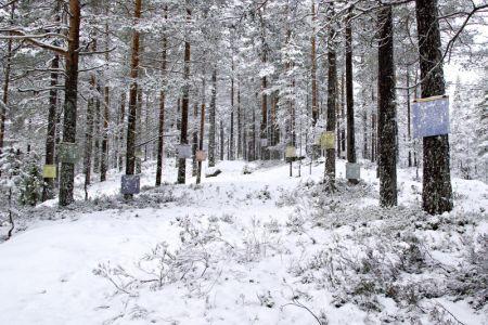 Å-samtale-med-trær-ondalen13.jpg